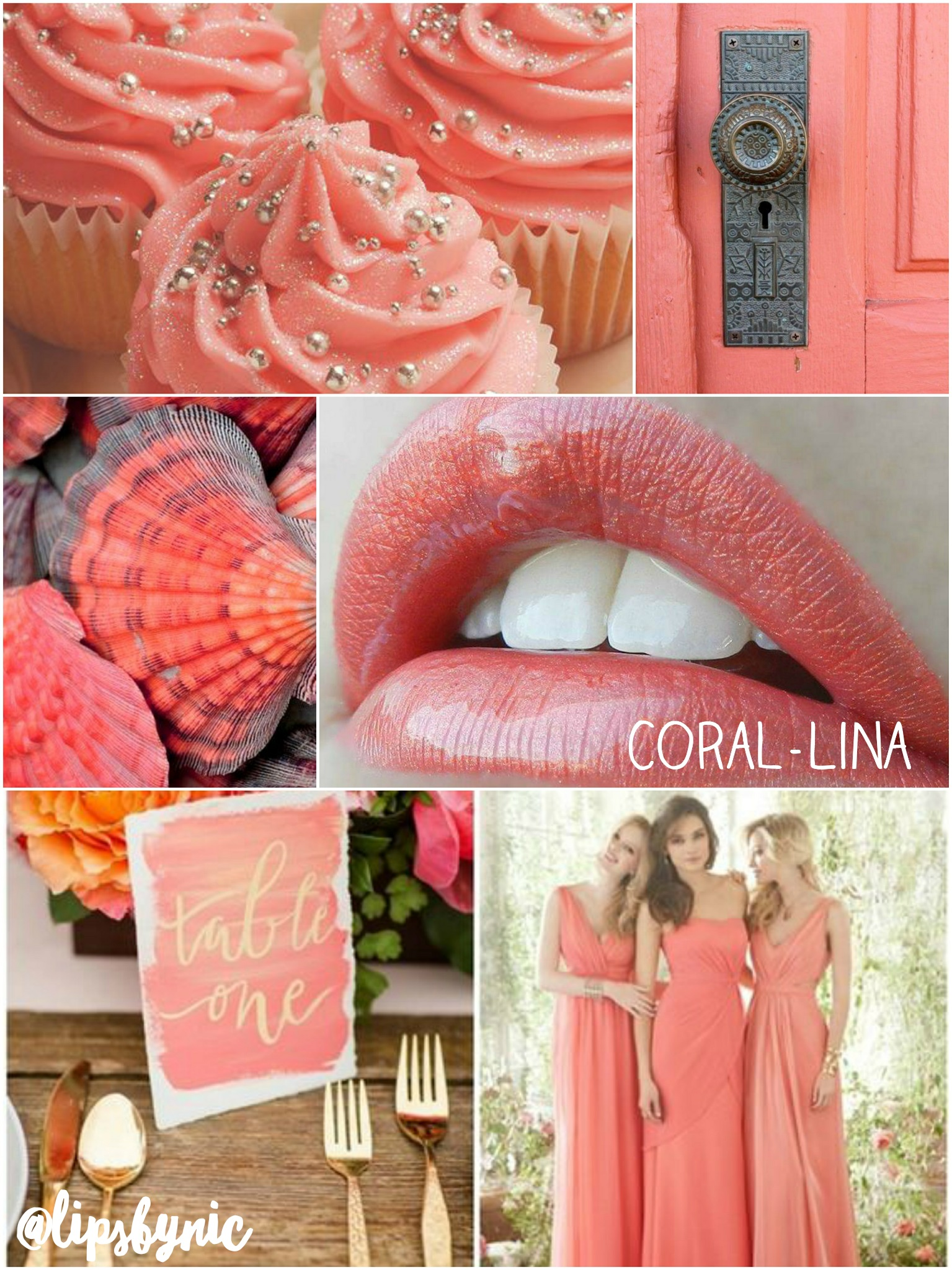 Coral-Lina Collage